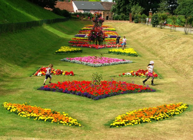 New flowerbeds in Colchester thanks to Pro-Grow
