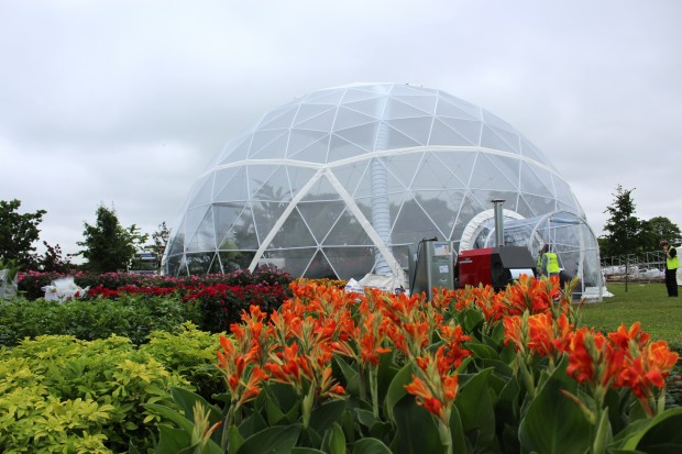 PRO-GROW is the official compost supplier for the Butterfly Dome at RHS Hampton Court Flower Show